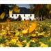 Podzim v Krupce
