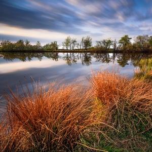 Dlouhý rybník