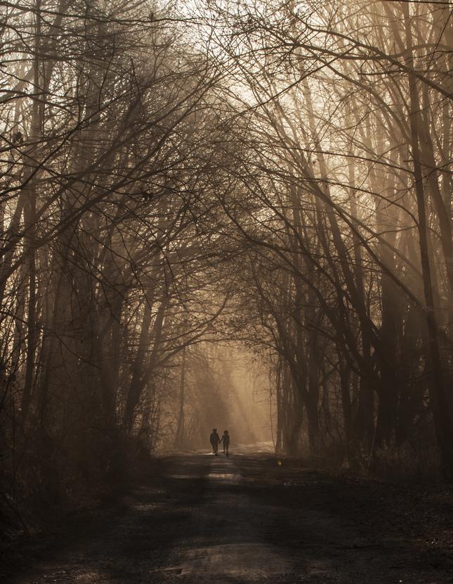 ranna prechadzka v hmle