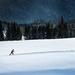 ski runner . .