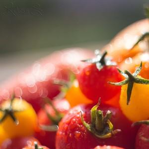 Jednoducho... paradajky