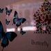 Mesto motýlov