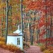 jeseň v Marianke
