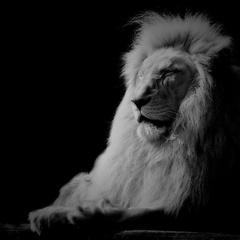 Zvieratá v zajatí XXIII