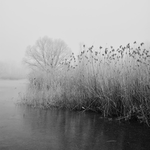 zimné nálady...