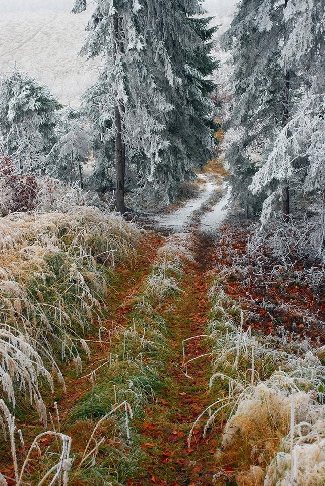 ked sa jeseň strieda zo zimou