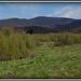 krajinka Sigord