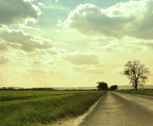 krajinka z cesty