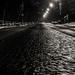 Osamelá zimná noc