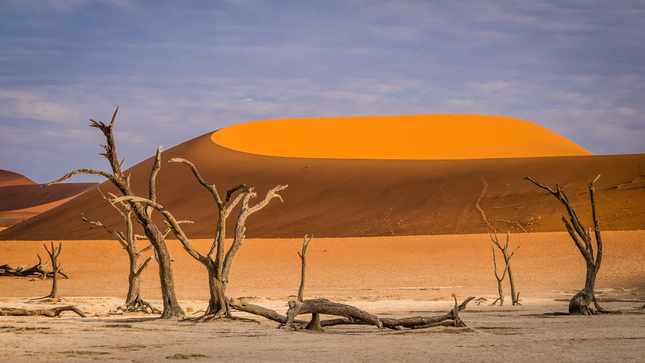 Geometria púšte
