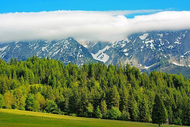 biela, modrá, zelená - Rakúsko