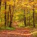 Jesenná scenéria