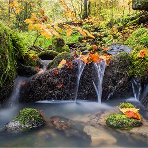 Malý potok - veľká radosť