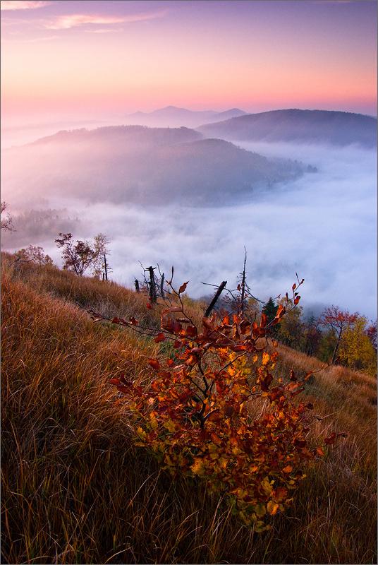 Soumrak v Lužických horách