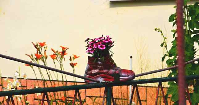 Keď neviete čo s topánkou :)