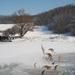 zima pri rybníku