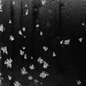 Snehové vločky.