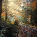 Jeseň v Zelenej doline