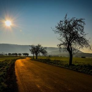 Cesta slnkom zaliata