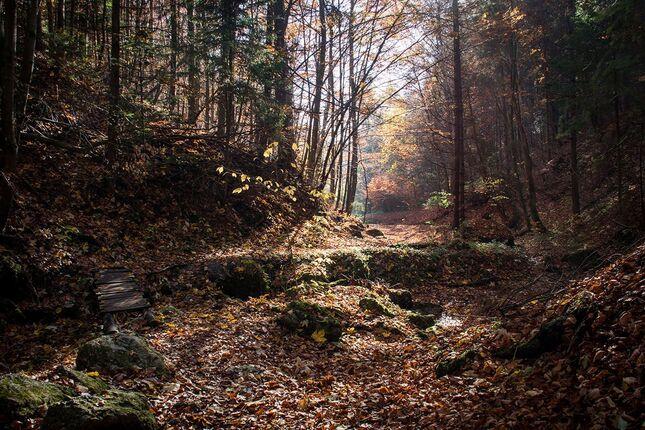 Jeseň v kaňone