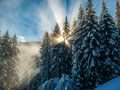 Alpské ráno