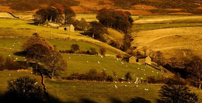 Na vidieku ...
