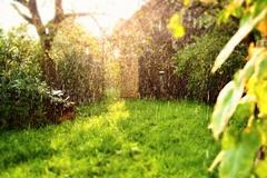 Šulíkova Záhrada