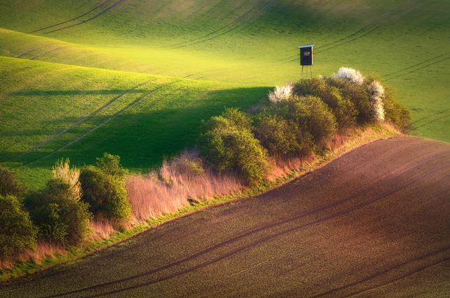 Moravské pohľady V