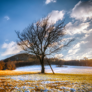 Jesenné stretnutie so zimou