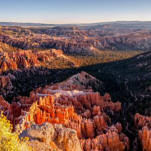 Bryce Canyon III