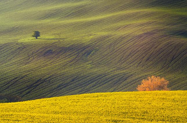 Moravské pohľady VII