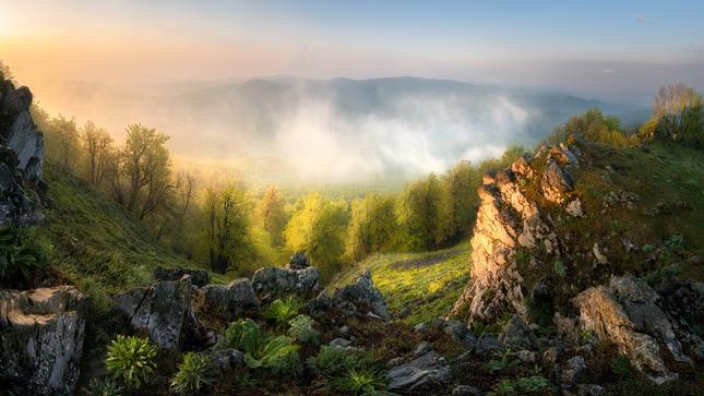 Malokarpatské ráno