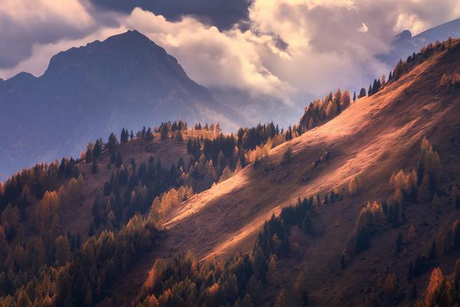 Oranžová hora
