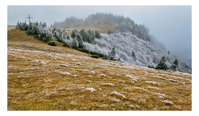 Jesennô,hmlistô,zimnô I