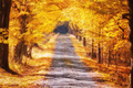 Jesennou cestou...
