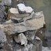 kameň