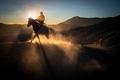 Bromo horseman