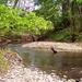 potok Sikenica