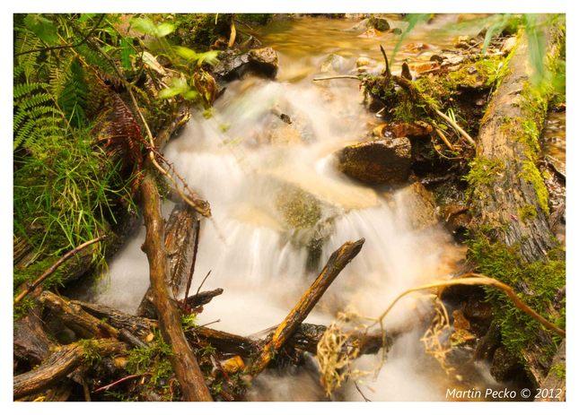Waterfall I