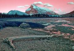 The Rockies I