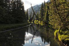 The Rockies II