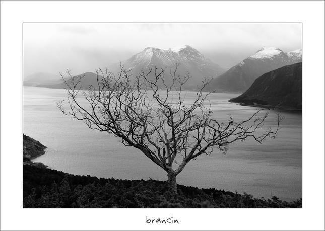 koruna fjordu