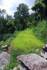 NEPAL_POKHARA_Sarangot017