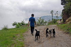 Nepal_Nagarkot_1_057