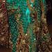 G+M_nepalska_svatba_party009