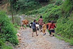 Nepal_Nagarkot_1_039