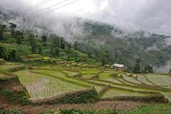 Nepal_Nagarkot_1_032
