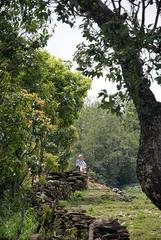 NEPAL_POKHARA_Sarangot014