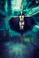 Black Fairy I