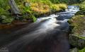 Hamerský potok